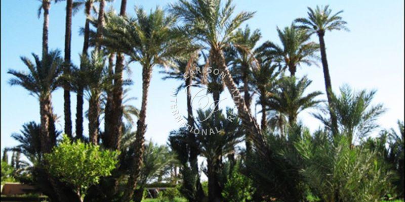 Property for Sale - Villa - marrakech--maroc